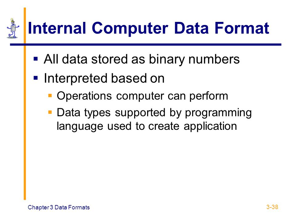Internal Computer Data Format