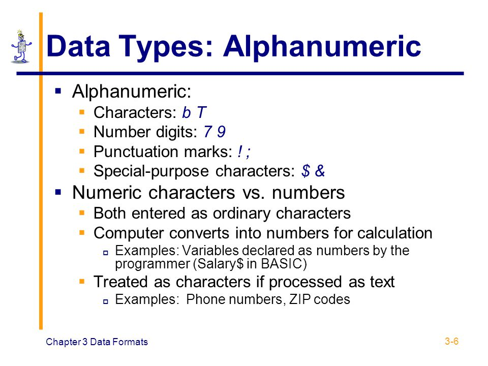 Data Types: Alphanumeric