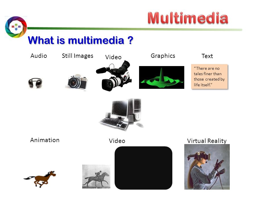 Multimedia What is multimedia Audio Still Images Video Graphics Text