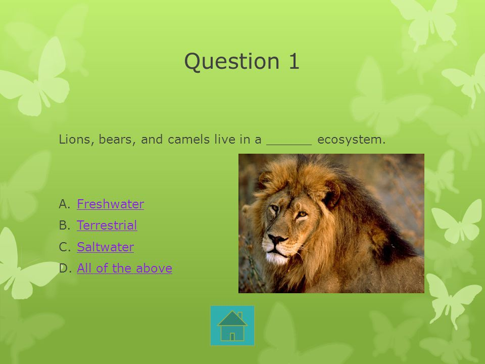 Question 1 Lions, bears, and camels live in a ______ ecosystem.