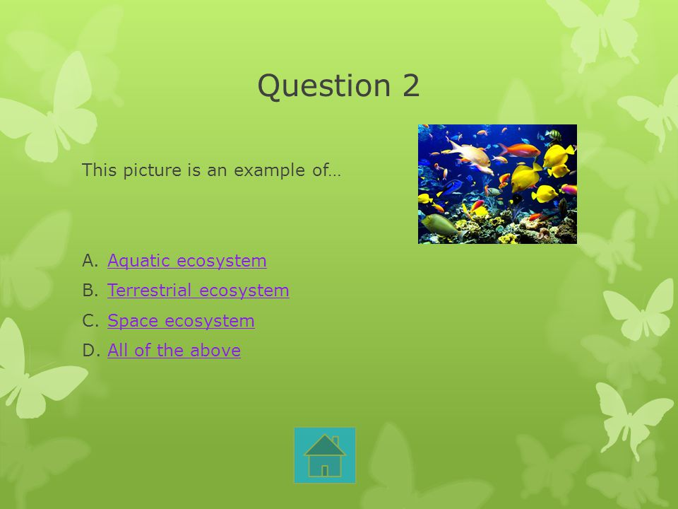 Question 2 This picture is an example of… Aquatic ecosystem