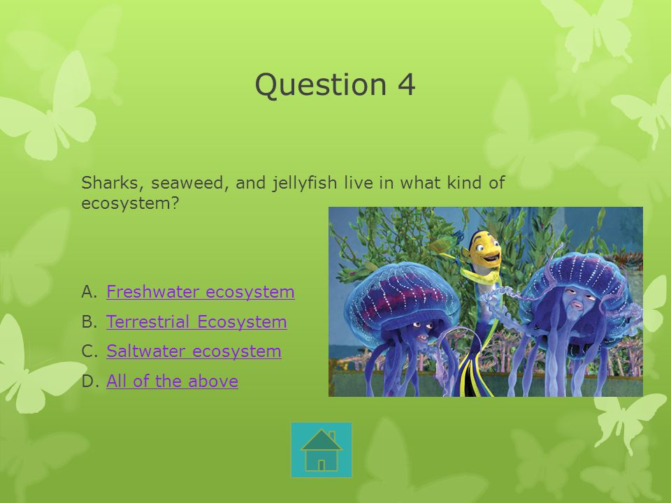 Question 4 Sharks, seaweed, and jellyfish live in what kind of ecosystem Freshwater ecosystem. Terrestrial Ecosystem.