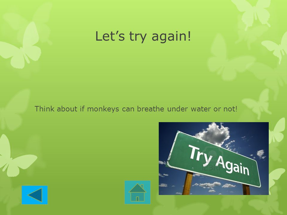 Let's try again! Think about if monkeys can breathe under water or not!