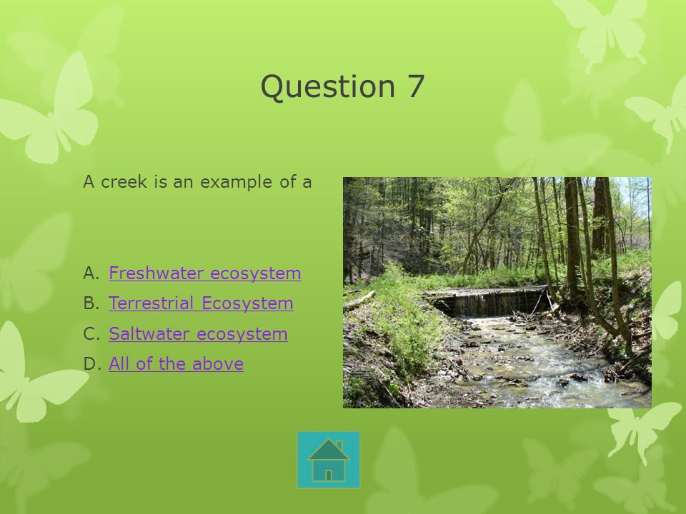 Question 7 A creek is an example of a Freshwater ecosystem