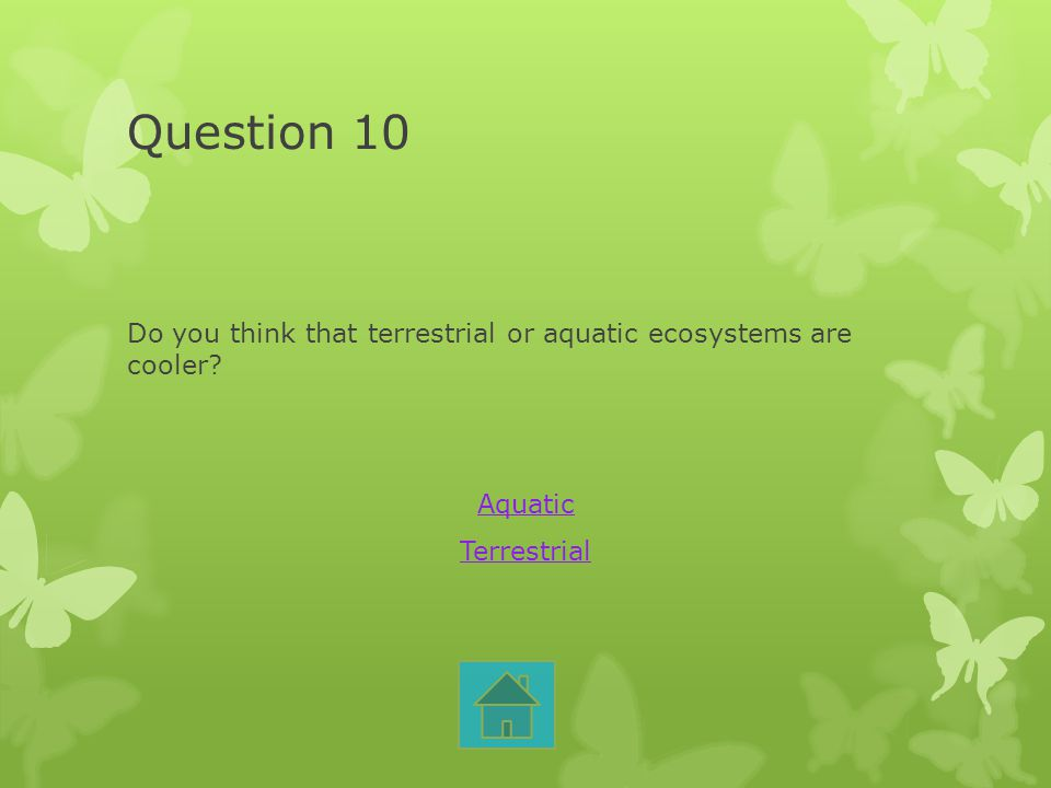 Question 10 Do you think that terrestrial or aquatic ecosystems are cooler Aquatic Terrestrial