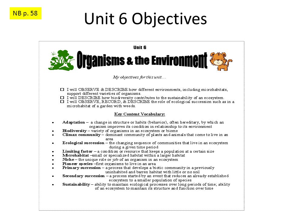 Unit 6 Objectives NB p. 58