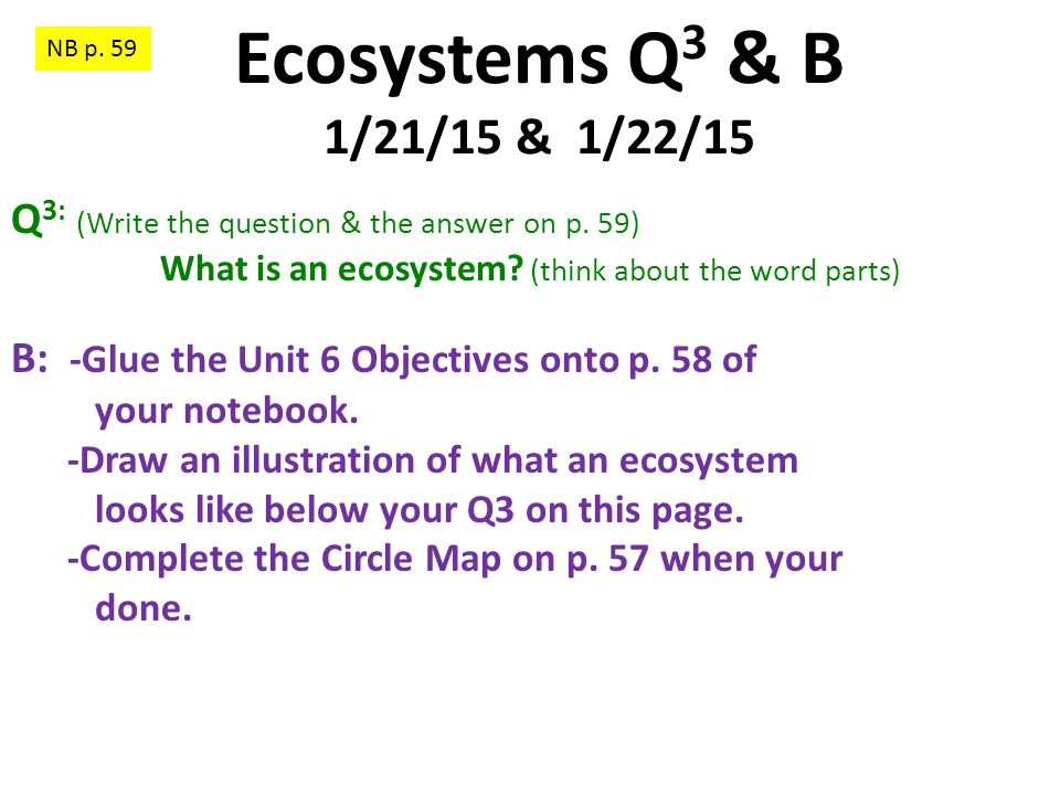 What is an ecosystem (think about the word parts)
