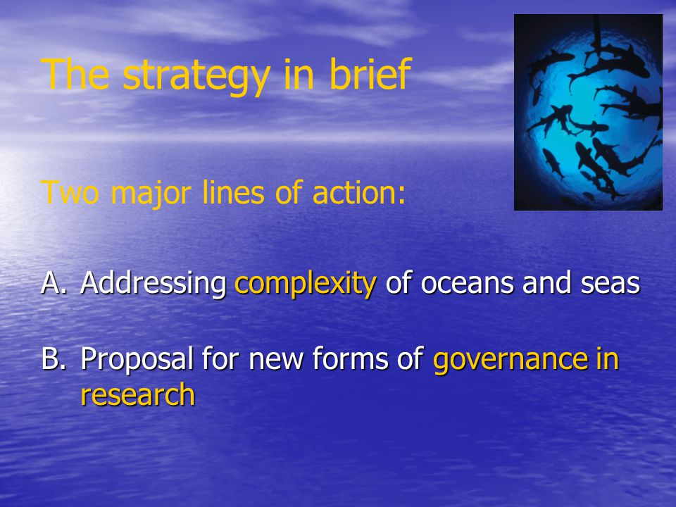 The strategy in brief Two major lines of action:
