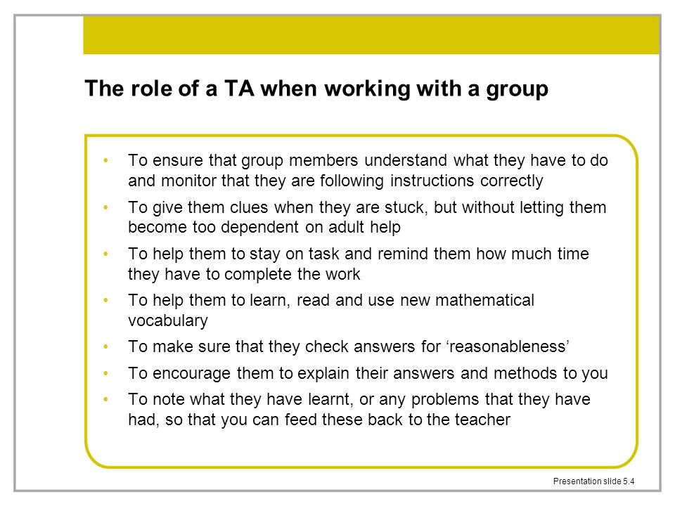 The role of a TA when working with a group