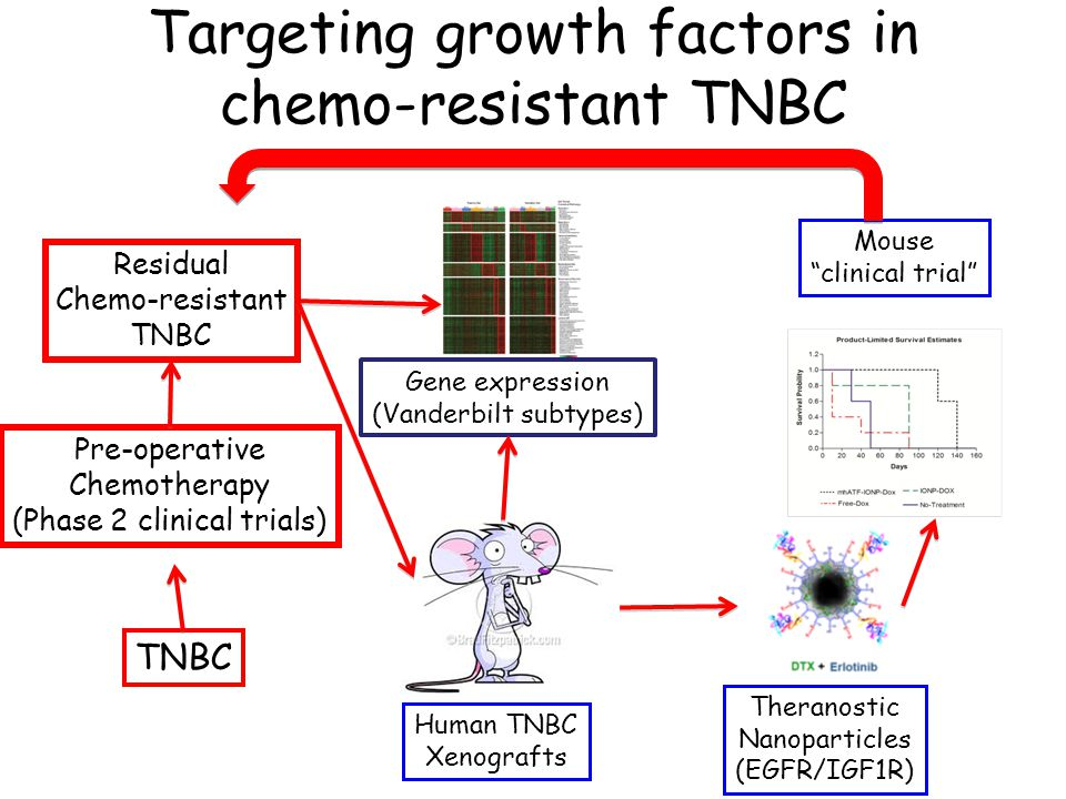 Targeting growth factors in chemo-resistant TNBC