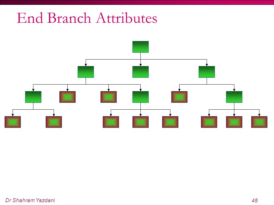 End Branch Attributes