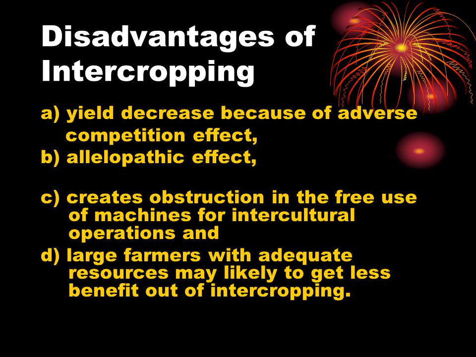 Disadvantages of Intercropping
