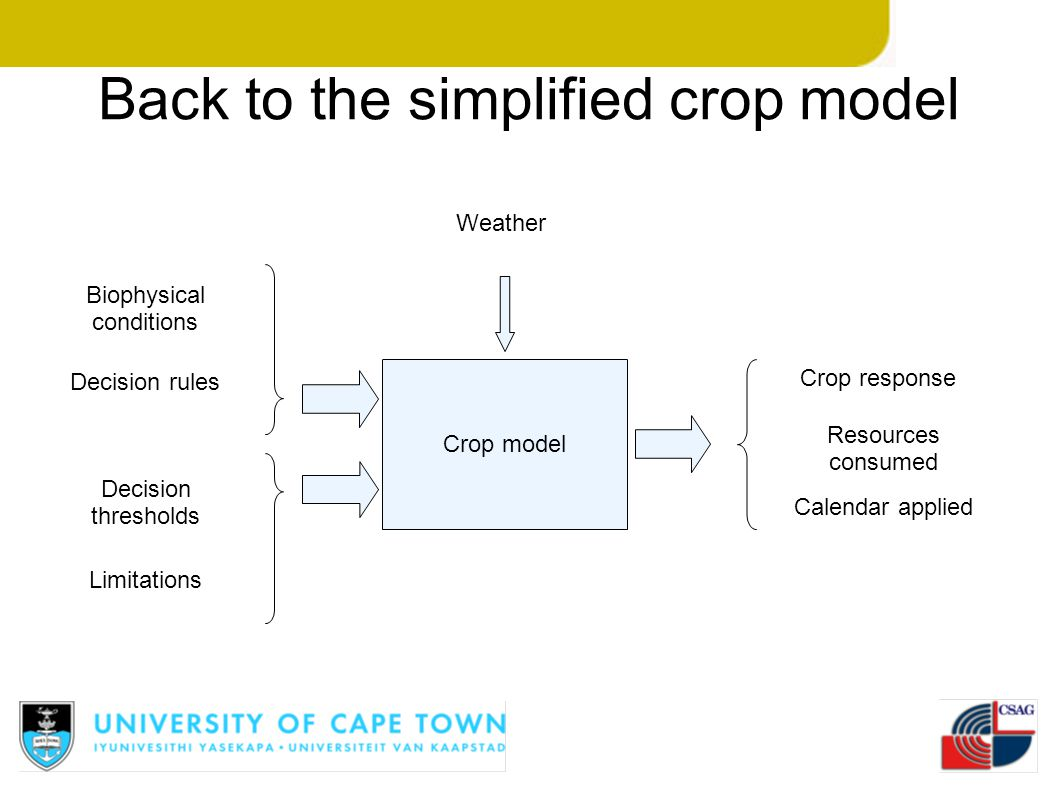 Back to the simplified crop model