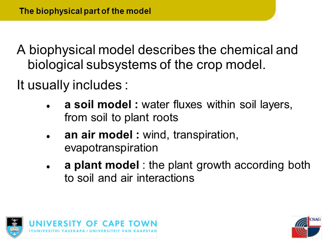 The biophysical part of the model