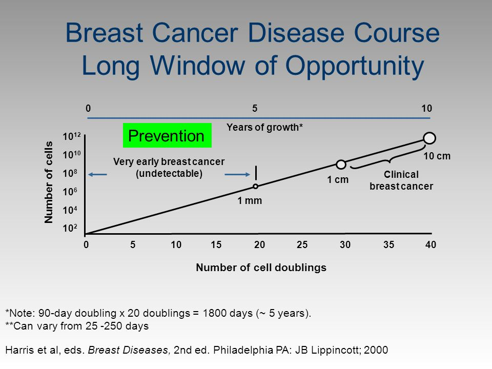 Breast Cancer Disease Course Long Window of Opportunity