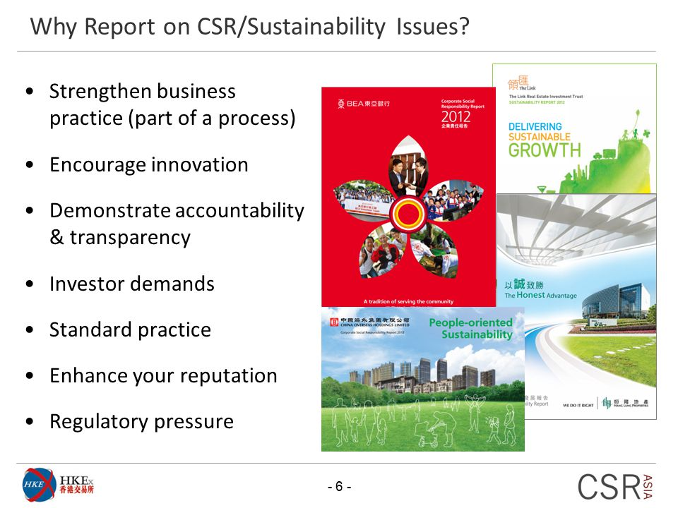 Why Report on CSR/Sustainability Issues