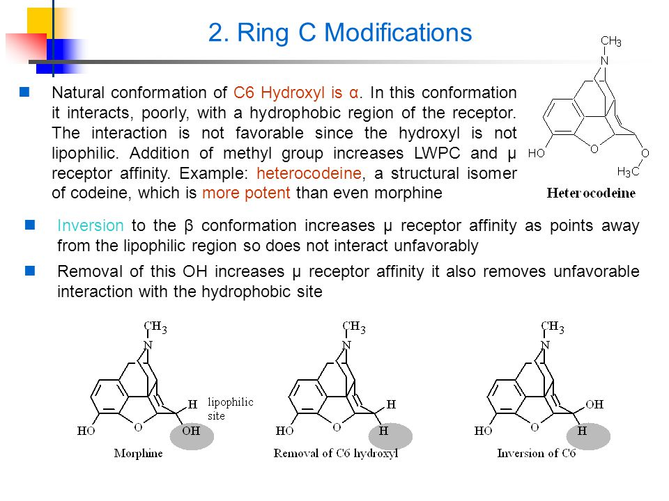 2. Ring C Modifications