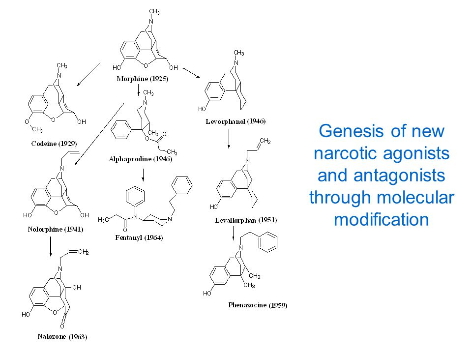 Genesis of new narcotic agonists and antagonists through molecular modification