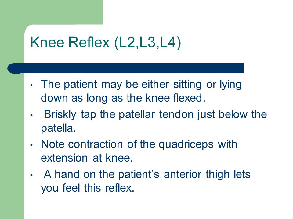 Knee Reflex (L2,L3,L4) The patient may be either sitting or lying down as long as the knee flexed.