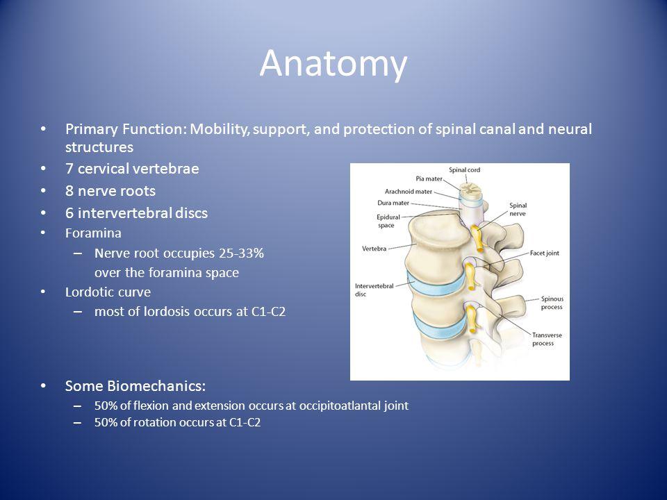 Cervical Nerve Root Impingement By: Michael Cox - ppt video online ...