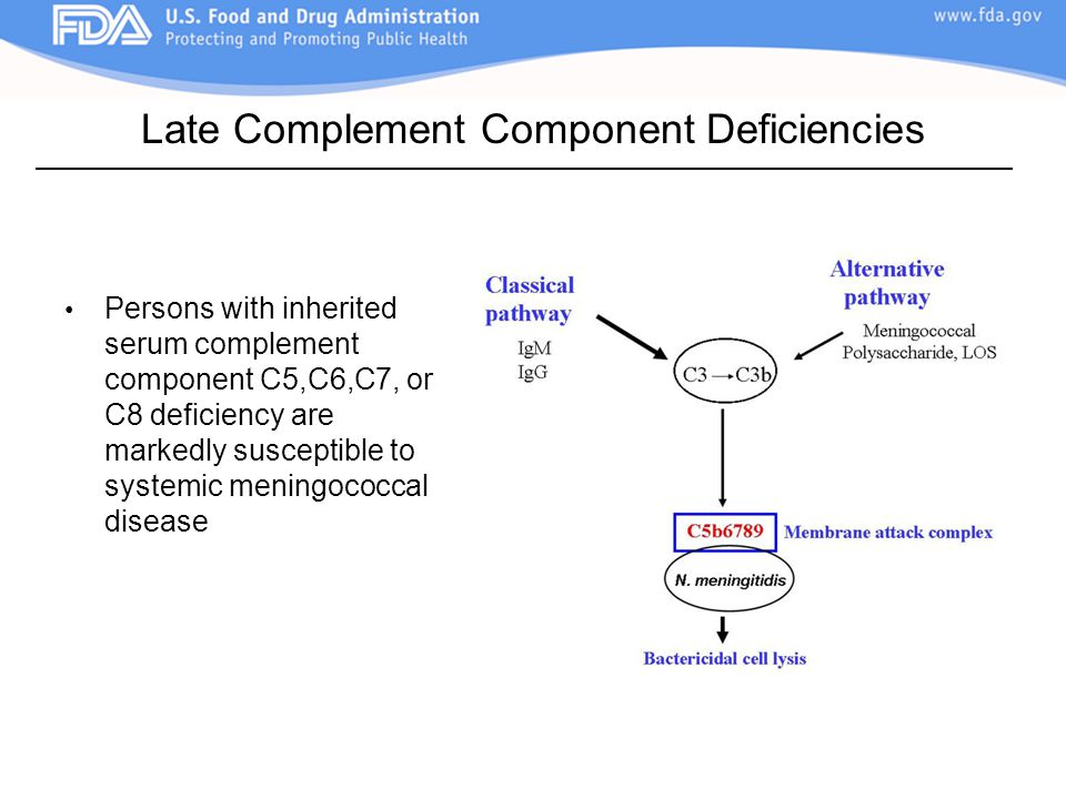 Late Complement Component Deficiencies