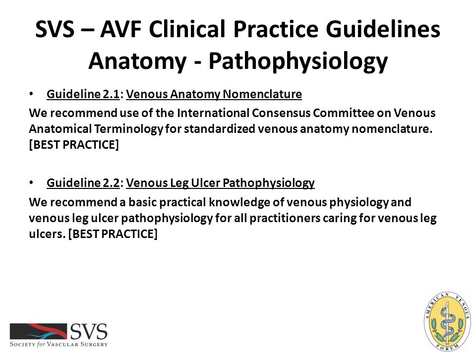SVS – AVF Clinical Practice Guidelines Anatomy - Pathophysiology