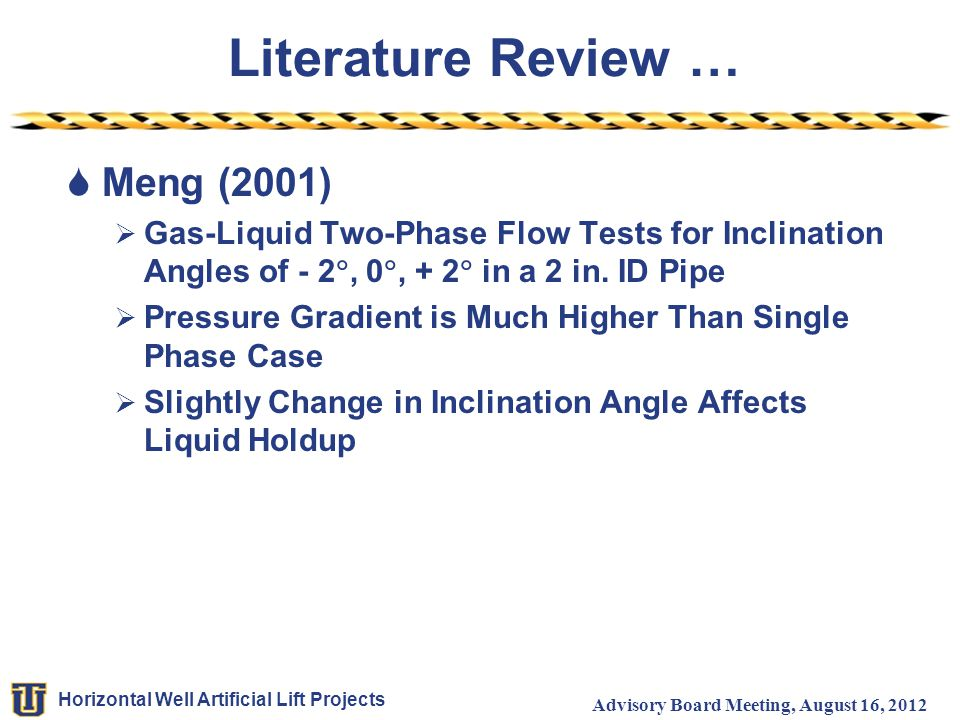 Literature Review … Meng (2001)