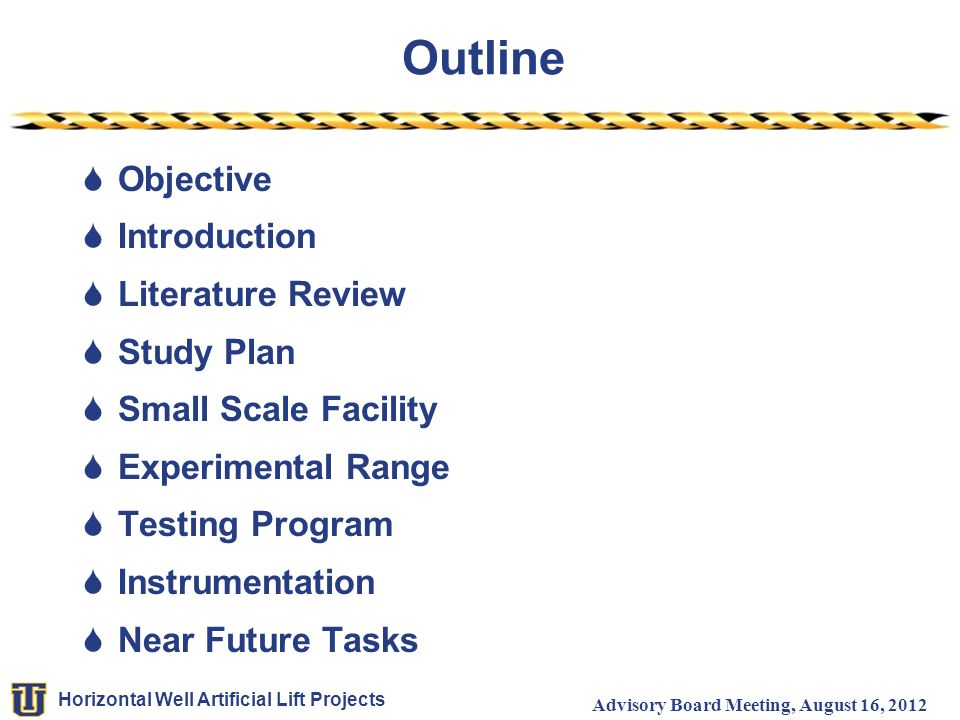 Outline Objective Introduction Literature Review Study Plan