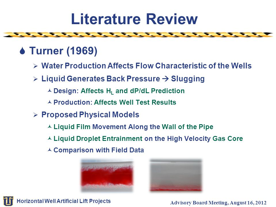 Literature Review Turner (1969)