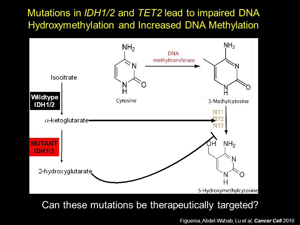 Can these mutations be therapeutically targeted