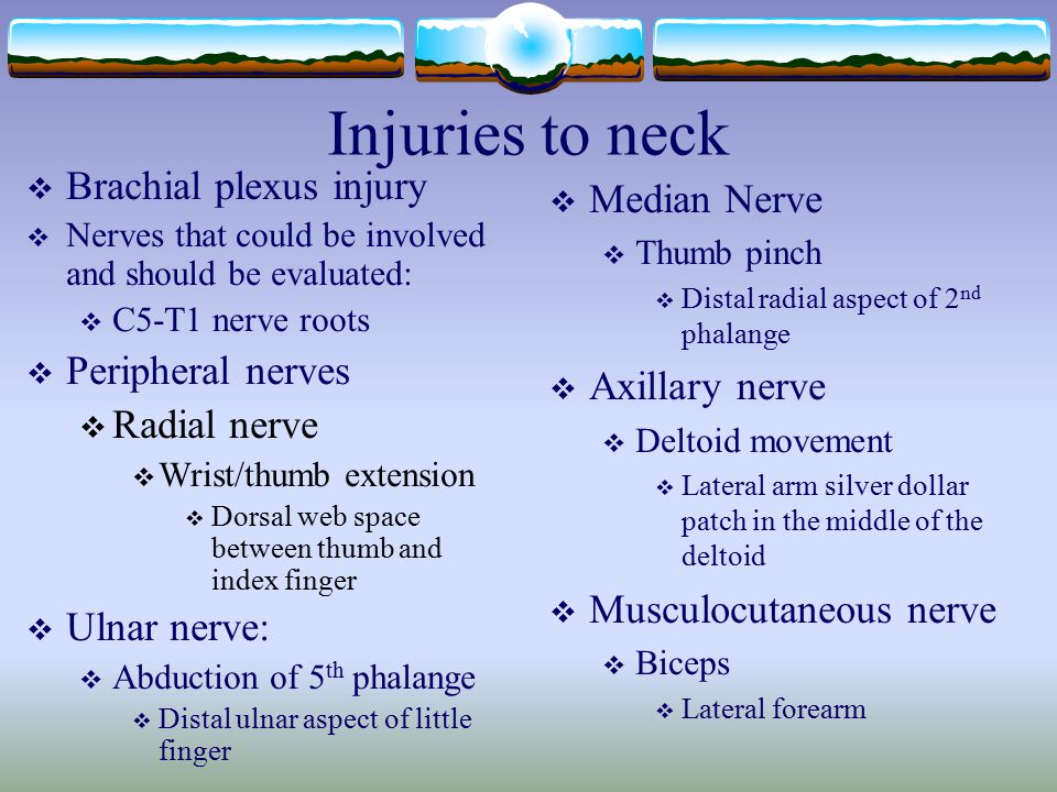 Injuries to neck Brachial plexus injury Median Nerve Peripheral nerves