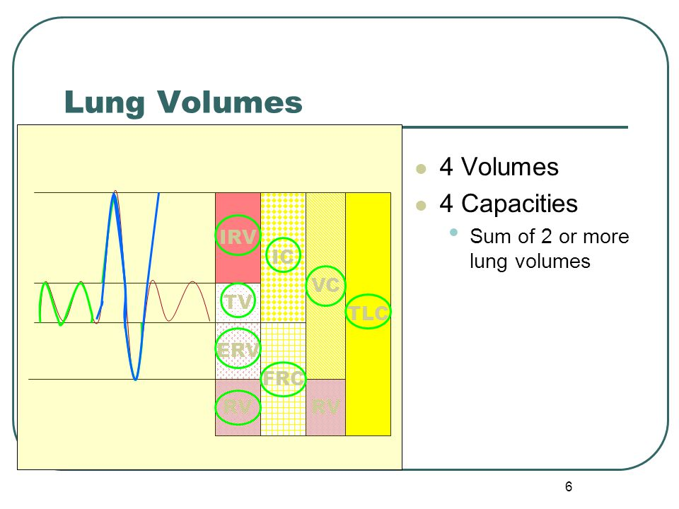 Lung Volumes 4 Volumes 4 Capacities Sum of 2 or more lung volumes IRV