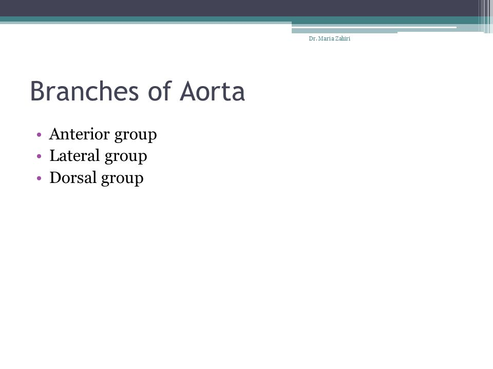 Branches of Aorta Anterior group Lateral group Dorsal group