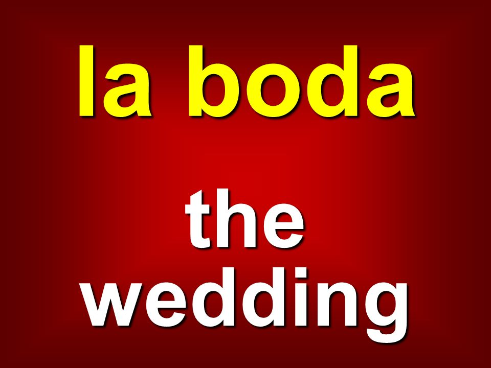 la boda the wedding