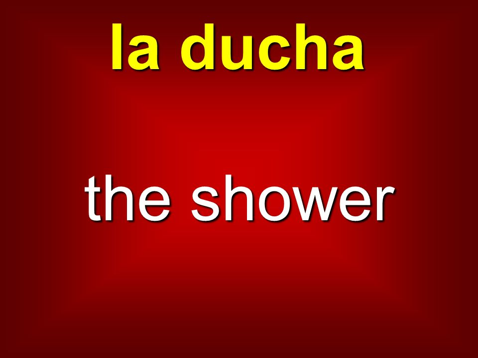la ducha the shower