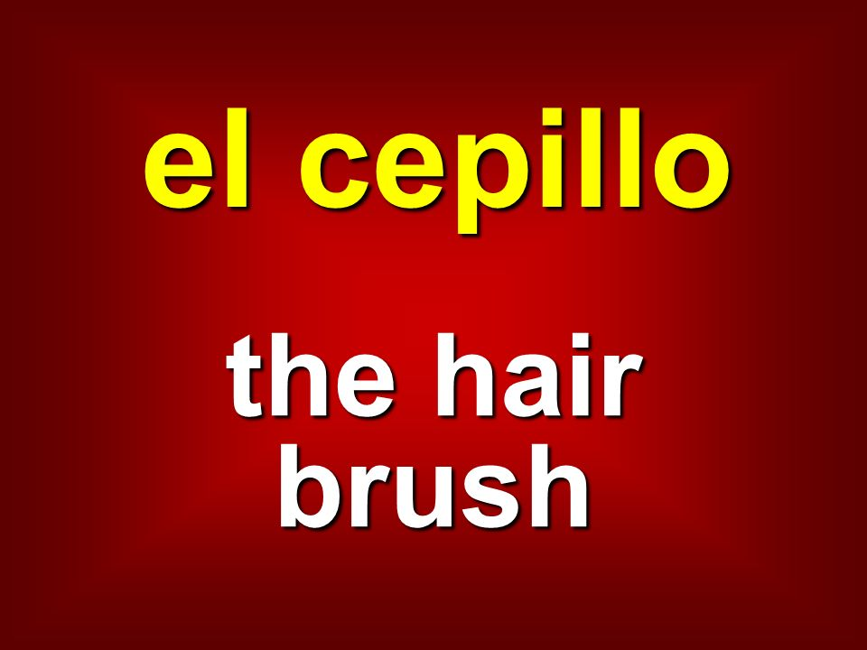 el cepillo the hair brush