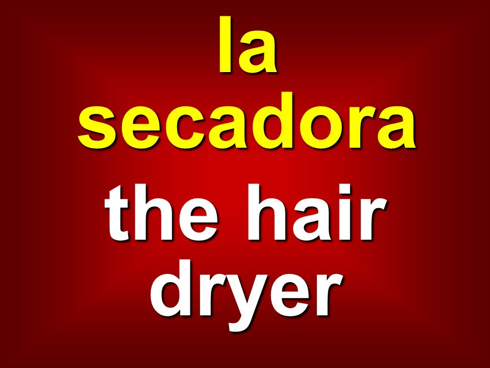 la secadora the hair dryer