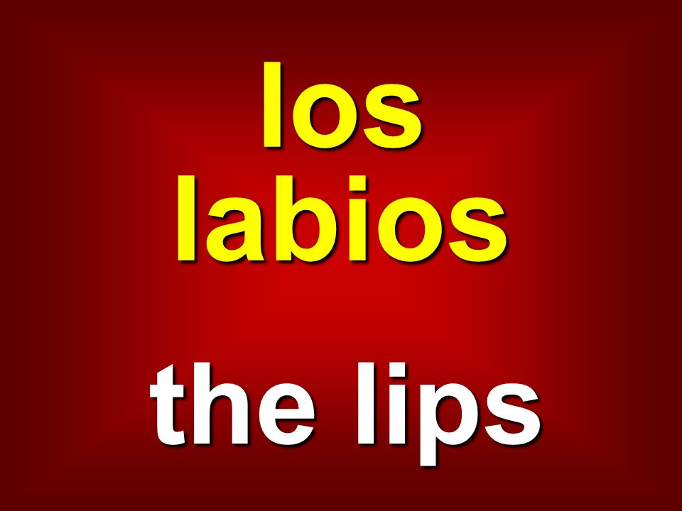 los labios the lips