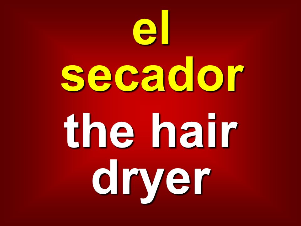 el secador the hair dryer