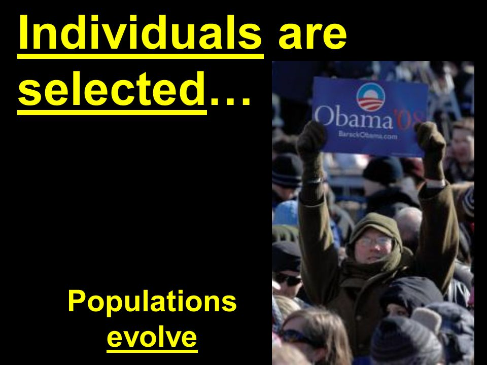 Individuals are selected…