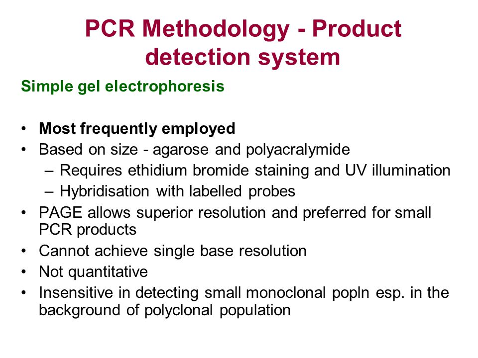 PCR Methodology - Product detection system
