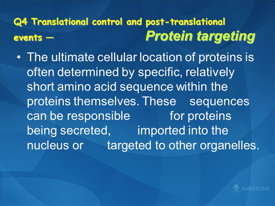 Q4 Translational control and post-translational events — Protein targeting