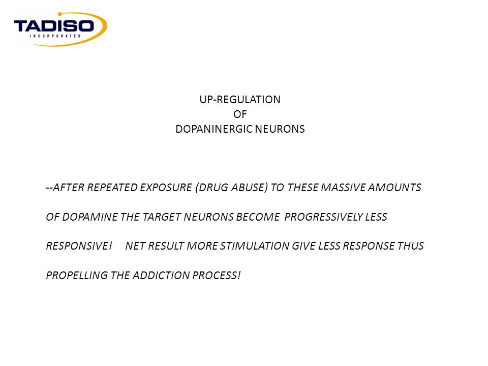 UP-REGULATION OF. DOPANINERGIC NEURONS. --AFTER REPEATED EXPOSURE (DRUG ABUSE) TO THESE MASSIVE AMOUNTS.