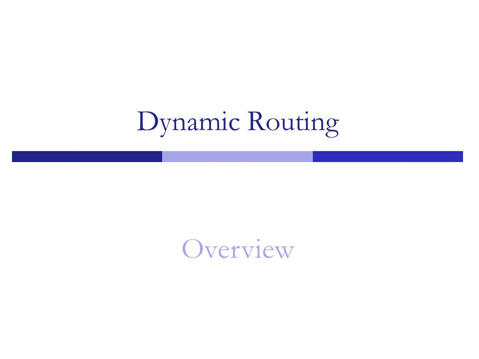 Dynamic Routing Overview 1