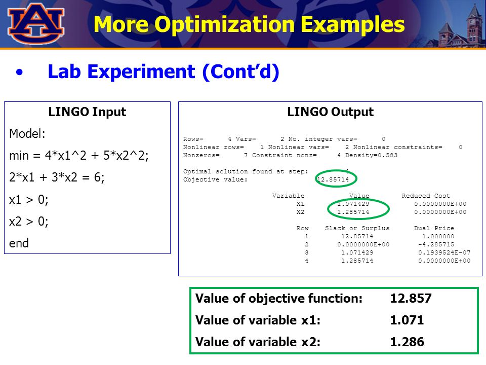 More Optimization Examples