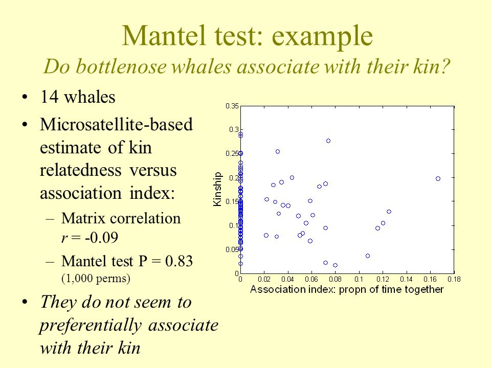 Mantel test: example Do bottlenose whales associate with their kin