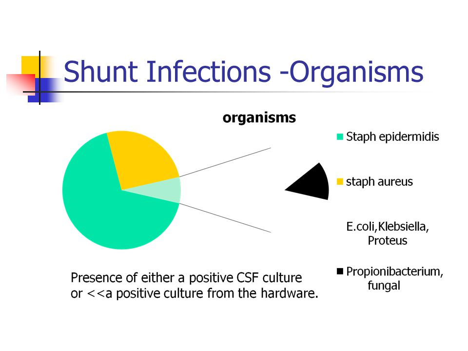 Shunt Infections -Organisms