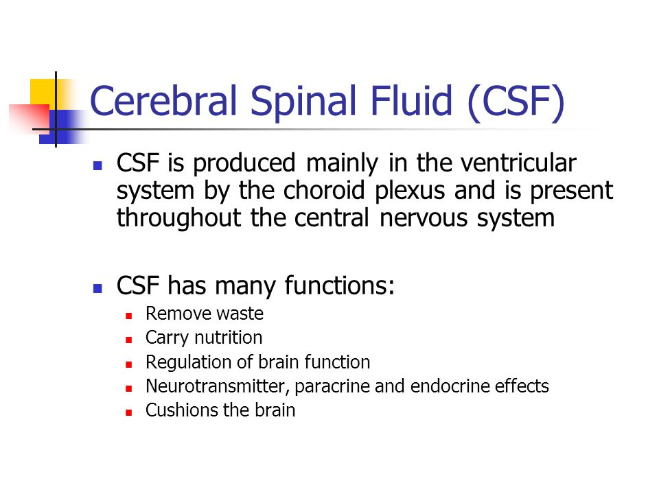Cerebral Spinal Fluid (CSF)