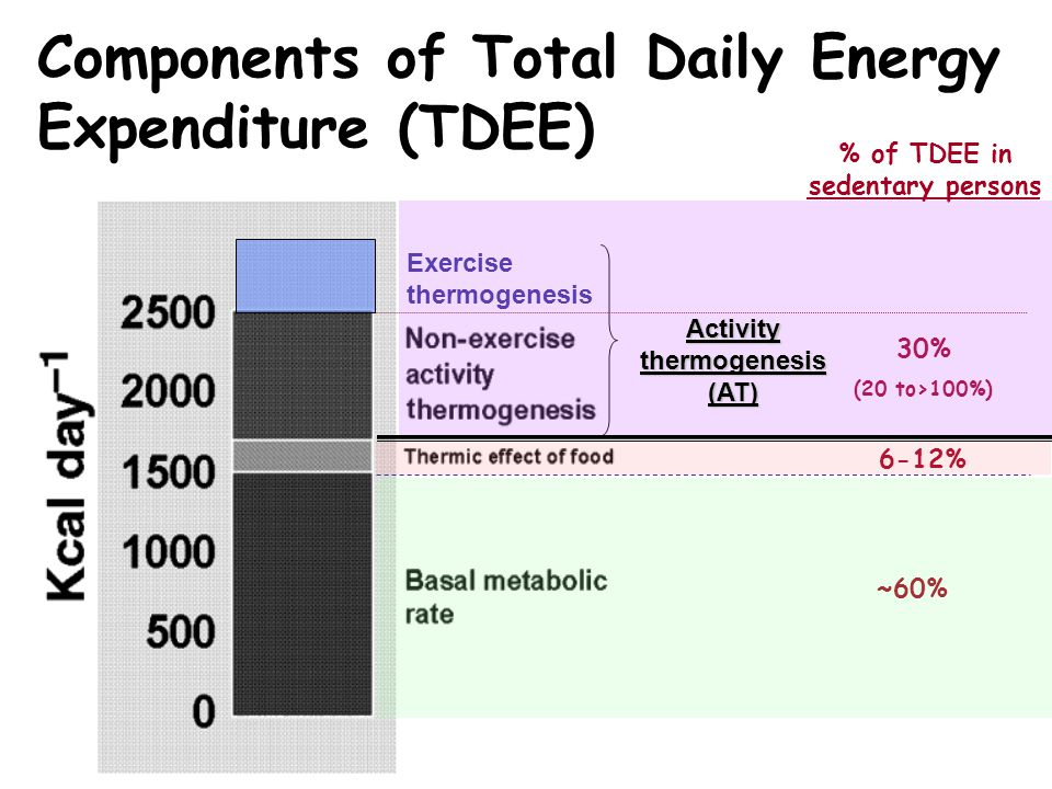 % of TDEE in sedentary persons Activity thermogenesis (AT)