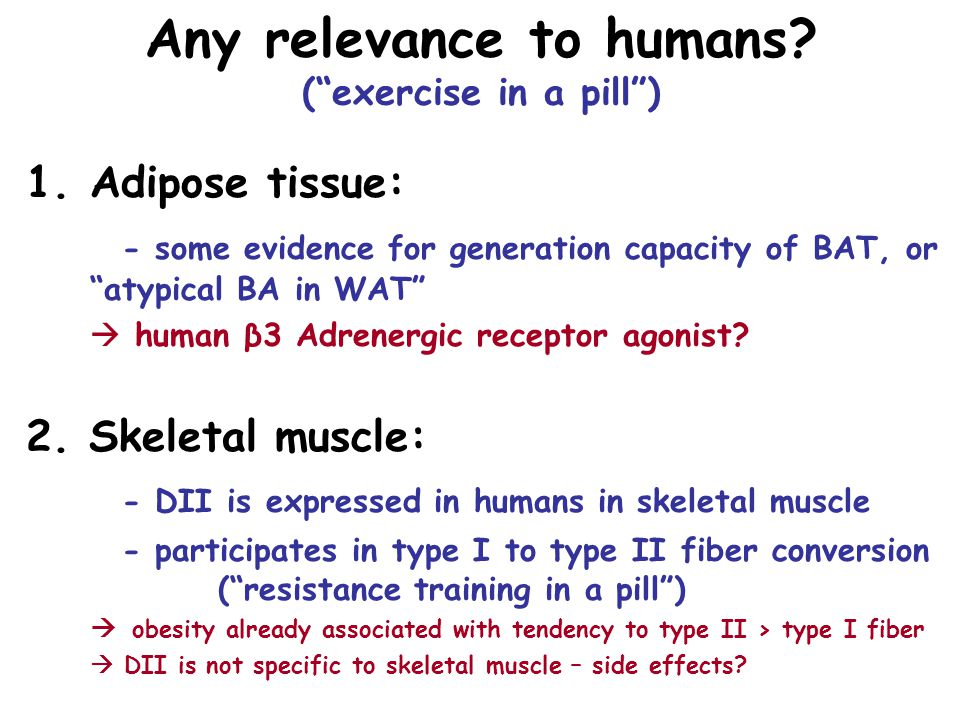 Any relevance to humans ( exercise in a pill )